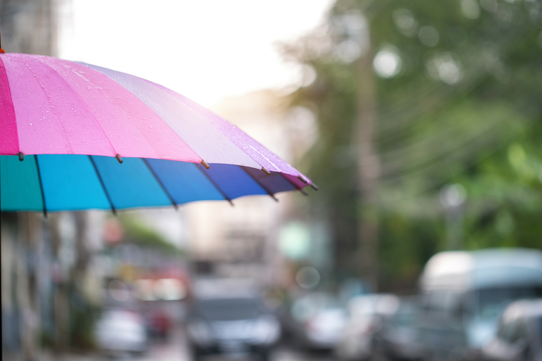 Szybkie ubieranie wymaga sprawdzenia prognozy pogody